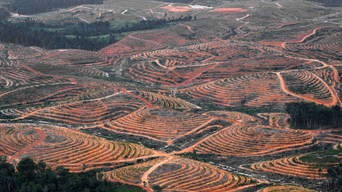Filling a gap: palm oil cultivation is subject to 'soft-law' standards in some cases
