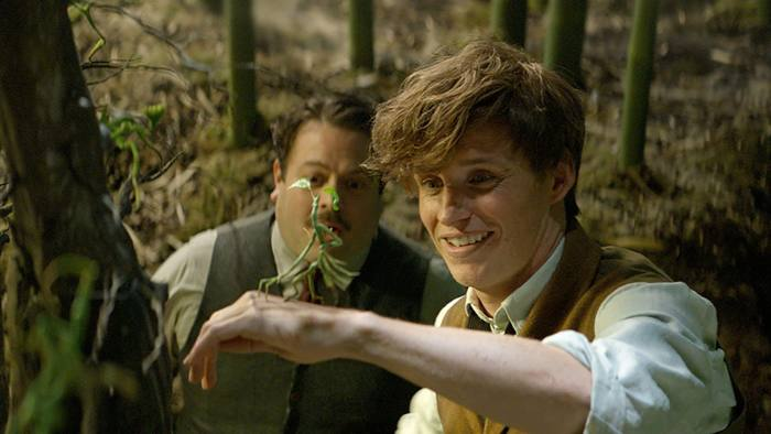 Film review: Fantastic Beasts and Where to Find Them — 'Thrills ...
