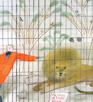 A man attempting to touch a caged lion