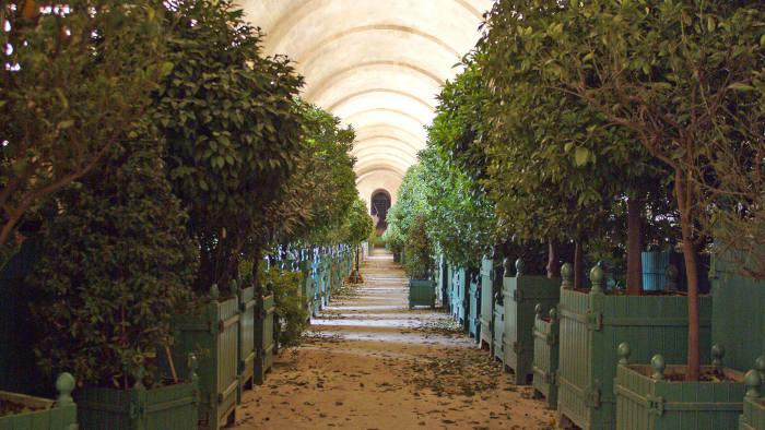 The palace's Orangerie