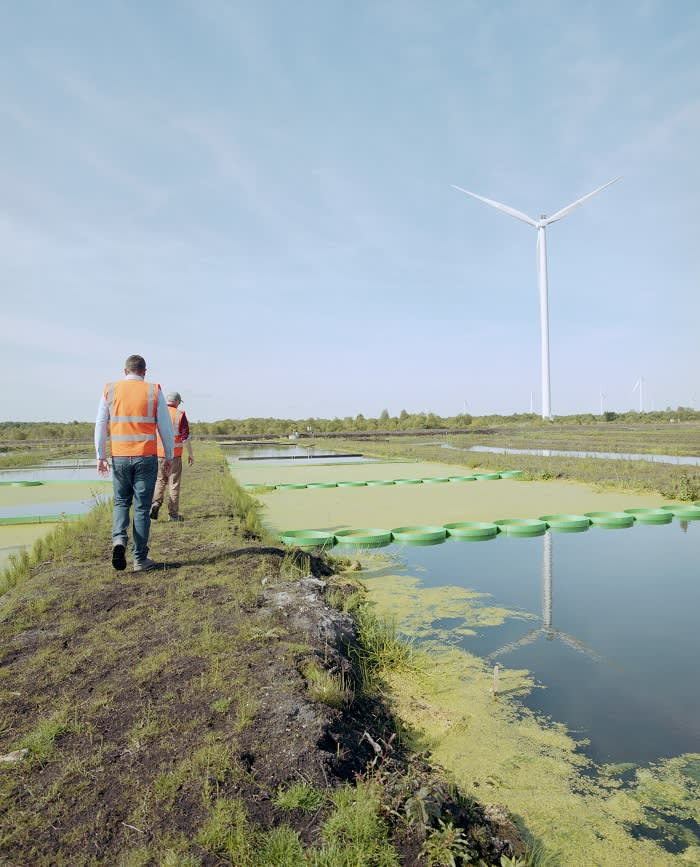 A pilot freshwater fish farm on a former peat bog in Mount Lucas, Co Offaly, that could herald Bord na Móna's entry into the food business