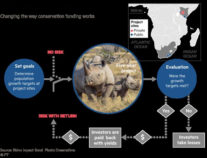 「Rhino Impact Bonds」的圖片搜尋結果