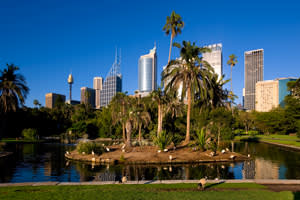 Australia, New South Wales, NSW, Sydney, Oceania, South Pacific Ocean, Australasia, View of the CBD, Central Business District from the the Royal Botanic Gardens