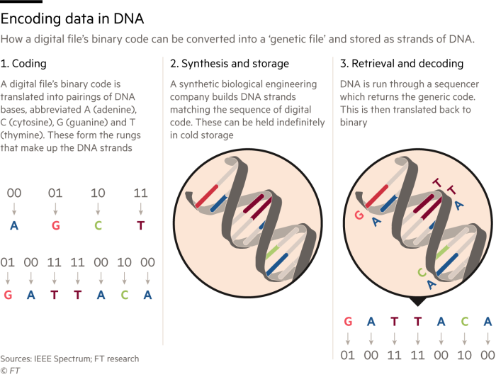 Graphic showing how to encode data in DNA