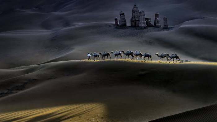 """Mandatory Credit: Photo by Hua Zhu/Solent News/REX/Shutterstock (8881131a) The camels being led through the desert Camels in the Taklamakan Desert, Xinjiang Uyghur, China - Jun 2017 A shepherd leds his herd of camels across a vast desert, casting long shadows as they pass an ancient sand castle on their long journey home. The ornate castle, surrounded by towers, stands around 38ft high and is the only landmark among endless sand dunes in the Taklamakan Desert, which is almost as large as Germany. Dr Hua Zhu, a medical school professor, of Plainsboro, New Jersey, USA, went to northwest China's Xinjiang Uyghur autonomous region to seek out the eerie scene. The 60-year-old spotted the shepherd and his herd of Bactrian camel and was struck by the beautiful sight. He said: """"One day I saw a photo of the castle in the desert and thought it was very interesting. """"I wanted to know where it was and asked a good friend and driver in Xinjiang, who has over 20 years driving and guiding experience in the area and even he didn't know where it was. """"After a few days searching, he found the location and we visited this extraordinary place."""