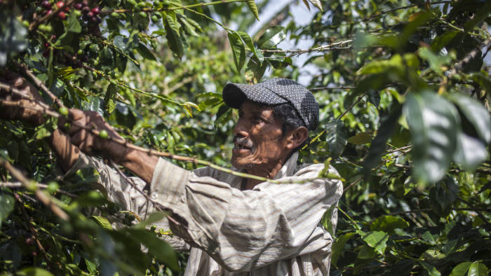 Press images from Farmer Brothers. Coffee suppliers in Latin America. Please credit.