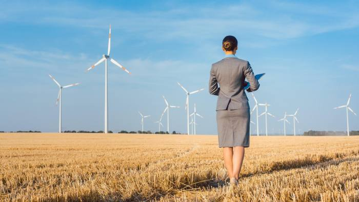 PTP633 Investor in green energy looking at her wind turbines standing with suit on field