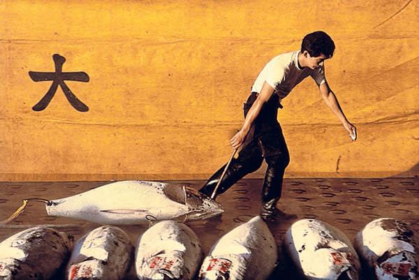 A haul of frozen tuna at Tsukiji market