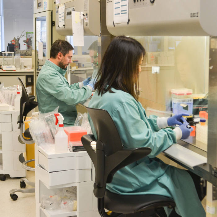 Researchers at the PetMedix lab in Cambridge.