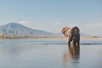 Zambezi river in Mana Pools National Park