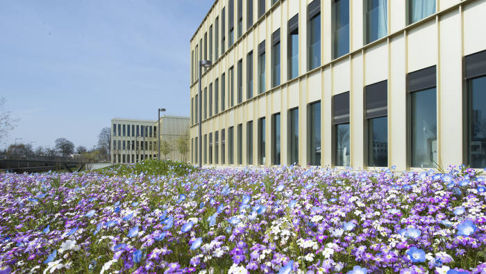 HEC Paris is the number one school in the FT European ranking of 2019