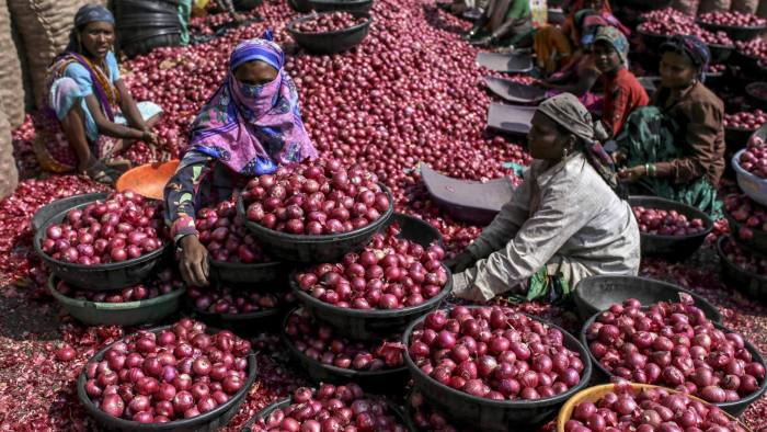 Workers sort onions at the Agriculture Produce Market Committee (APMC) wholesale market in Lasalgaon, Maharshtra, India, on Wednesday, Jan 23, 2019. Speculation is swirling thatModi's budget includes a cash transfer program for farmers entailing an additional spending of 700 billion rupees ($9.8 billion), support for small businesses and some reprieve for taxpayers.Photographer: Dhiraj Singh/Bloomberg