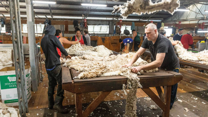 Australian Drought - Pooginook Farm near Griffith. Picture shows: grading sheep's wool immediately after shearing