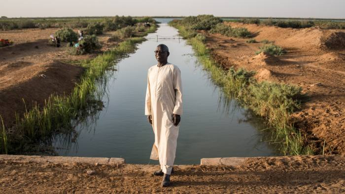 Senegal rice farmers offer lessons for rest of continent   Financial