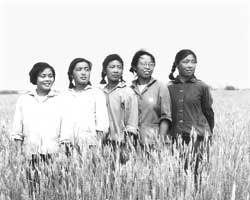 Cao Yifei in her youth, with some friends in the fields