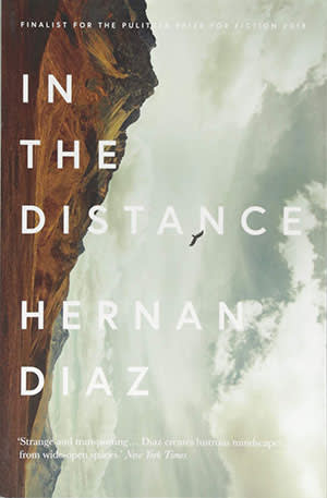 In the Distance by Hernan Diaz — lone star | Financial Times