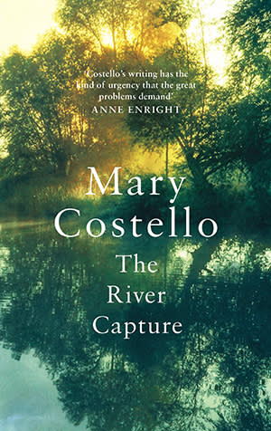 Image result for mary costello the river capture