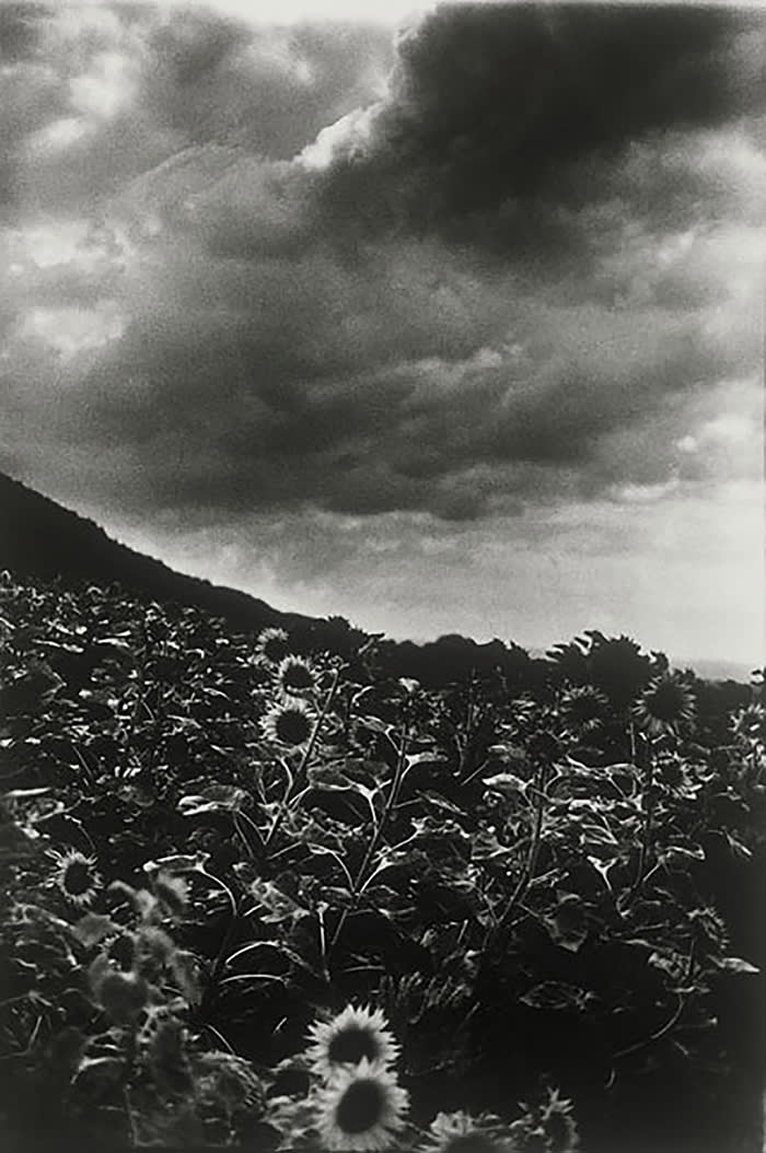 Ming Smith, Goghing with Darkness and Light, Singen, Germany, 1989, archival pigment print, 50.5 × × 40.5 cm, Courtesy of Jenkins Johnson Gallery