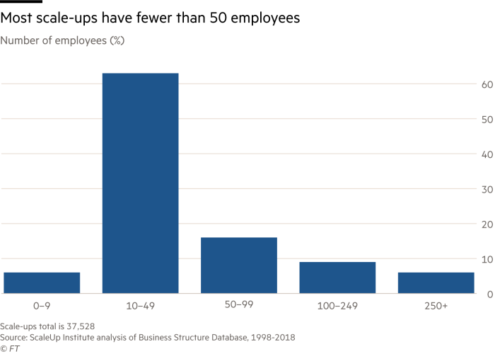 Chart showing most scale-ups have fewer than 50 employees