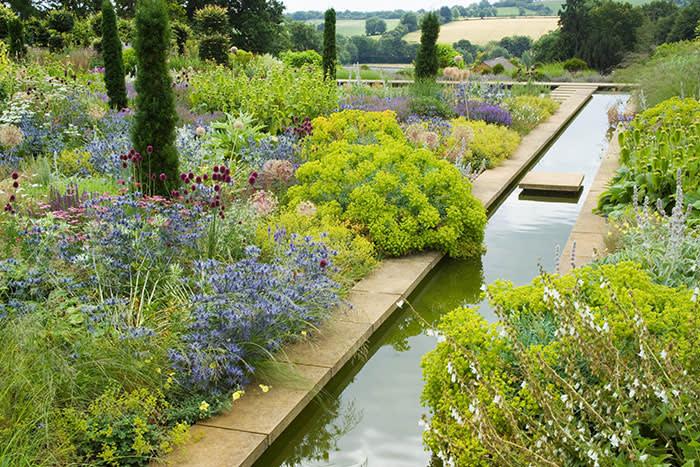 Narrow canal and borders at Broughton Grange. Planting includes Eryngium x zabelii, Allium sphaerocephalon, Stachys byzantina and Taxus baccata 'Fastigiata' (C) GAP Photos//Jonathan Buckley - Design: Tom Stuart-Smith