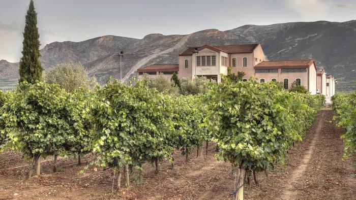 George Skouras's vineyard near Nemea