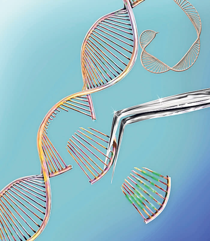 P2PT49 CRISPR gene editing, conceptual computer illustration. The CRISPR-CAS9 protein is used to cut a DNA (deoxyribonucleic acid) molecule at a specific site. The DNA molecule can then be modified.