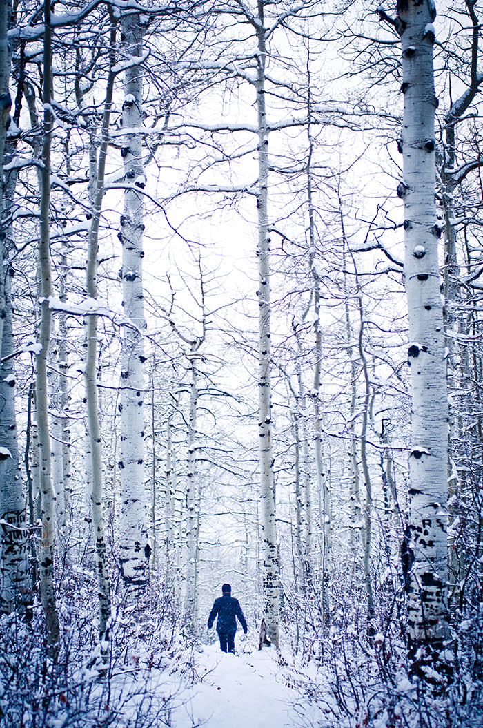 February, 19 2010: A girl hikes through a snow covered Aspen field in Steamboat Springs, Colorado. (C) Rob Hammer / Getty Images