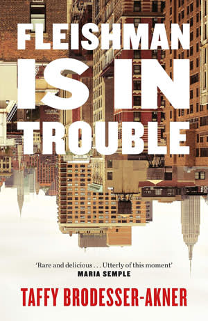 Book jacket of 'Fleishman Is in Trouble' by Taffy Brodesser-Akner