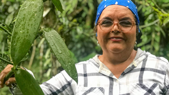 "Amelia Paniagua-Vásquez of the University of Costa Rica at a vanilla plantation in Guápiles, Costa Rica, January 8, 2020. She has helped pioneer the cultivation of the plant in agroforestry systems on previously deforested land. ""Agroforestry provides sustainability over time and helps combat climate change,"" she says. Photo by FT journalist Jude Webber."