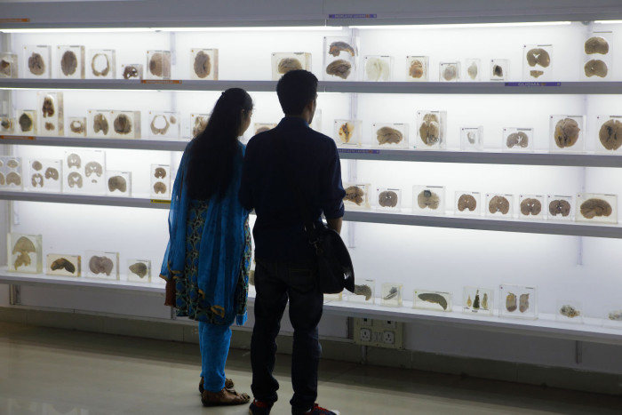 13 Dec 2018 - Bangalore , INDIA. the Brain Museum at NIMHANS. (Subhash Sharma for FT)