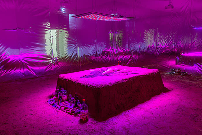 Candice LIN, La Charada China, 2018, earth, clay, guano, cement, seeds of various plants, grow lights, reflective mylar, wooden armature, grid, video, glass jars, dimensions variable © the Participant and TFAM