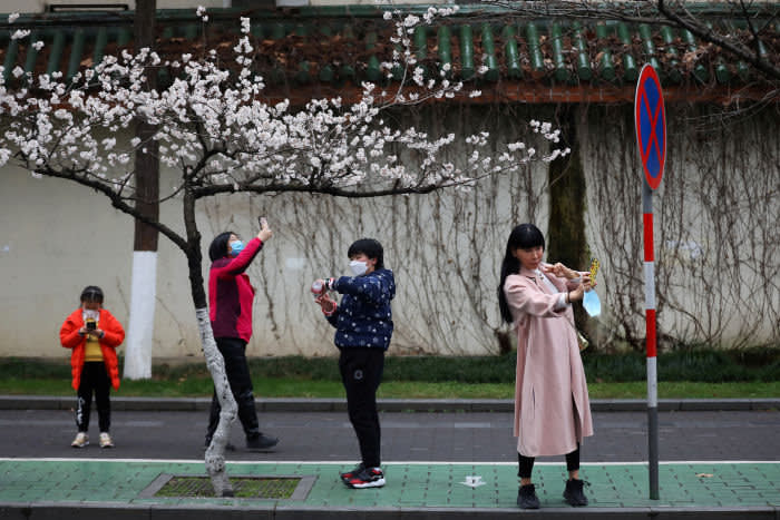 People wearing face masks use their phones under blooming cherry blossoms near Jiming Temple, as the country is hit by a novel coronavirus, in Nanjing, Jiangsu province, China February 29, 2020. Picture taken February 29, 2020. cnsphoto via REUTERS. ATTENTION EDITORS - THIS IMAGE WAS PROVIDED BY A THIRD PARTY. CHINA OUT. TPX IMAGES OF THE DAY