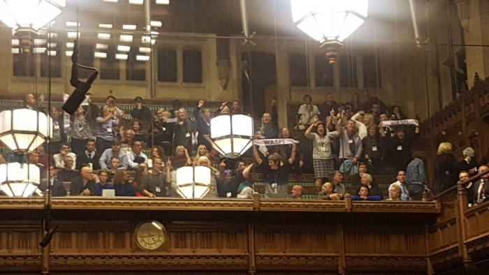 WASPI Women protest in Commons on Budget Day 29th October 2018