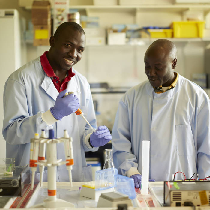 APCDR in Cambridge. Researchers a part of a study on the genetic of a particular population in Uganda at a lab in Cambridge University.