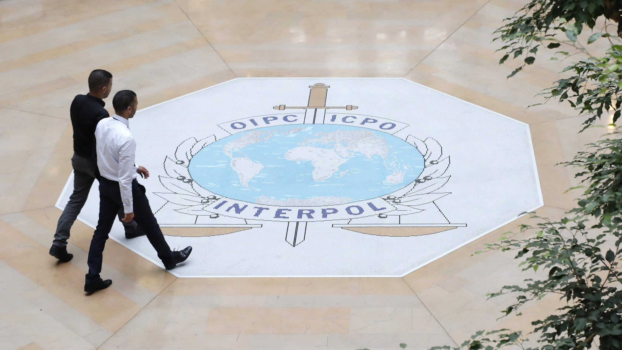 Ghosn case gives Interpol fresh problem after difficult week