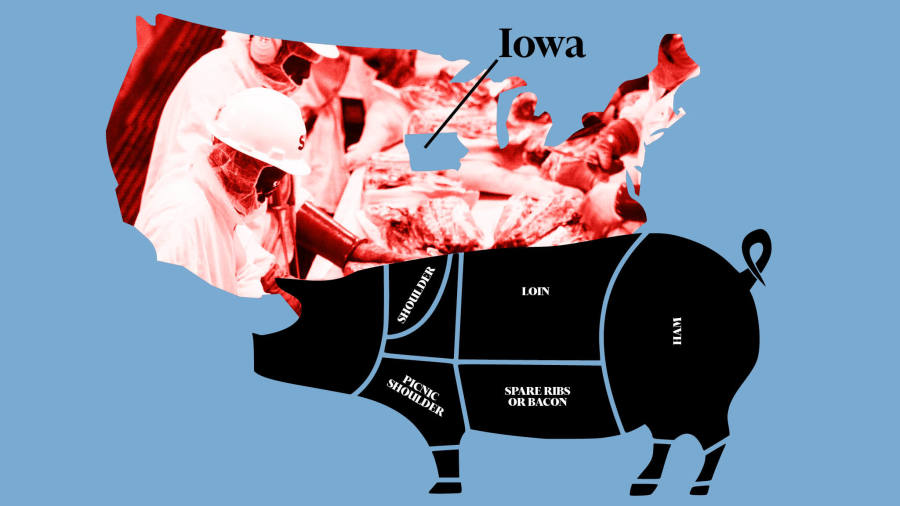 Abattoir economics: Trump's immigration policy tests Iowa