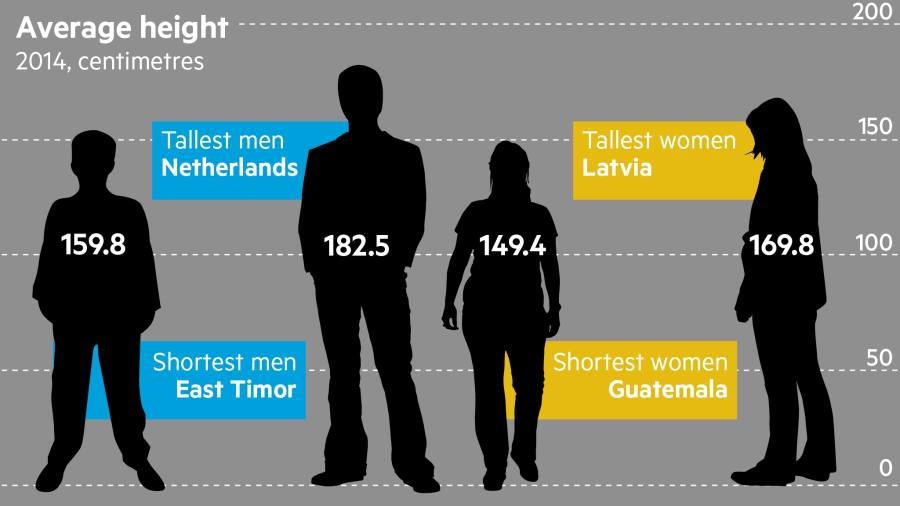 what is the average height of a person