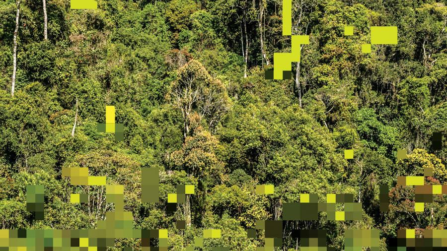 Blockchain keeps environmental impact investors in the loop