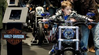 Harley-Davidson sees lower 2018 bike shipments, shares sputter