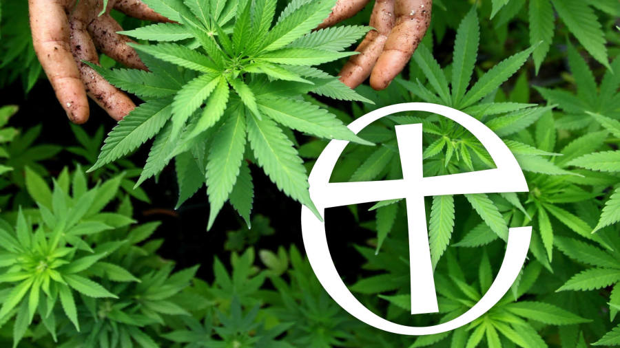 Higher power: Church of England backs medicinal cannabis