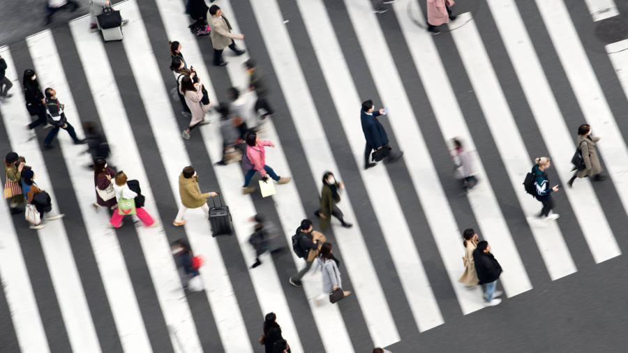 Japan on course for technical recession, economists warn