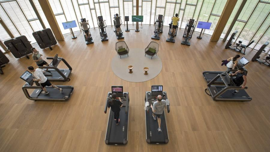 Technogym founder: fit for purpose financial times