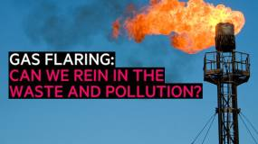 Article image: Gas flaring: can we rein in the waste and pollution?
