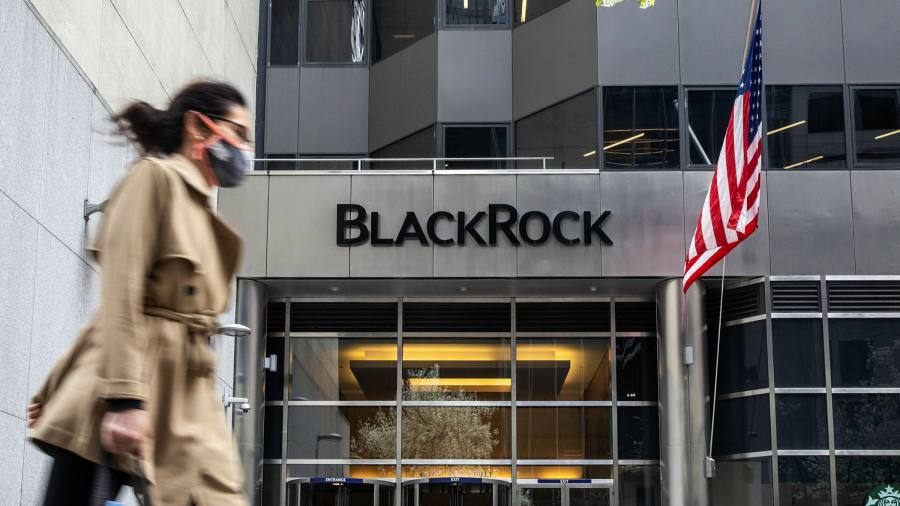 BlackRock accused of ESG inconsistency over Indonesia palm oil