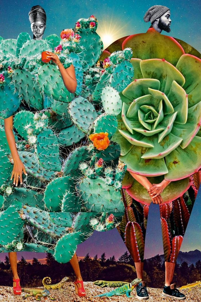 Cacti, 2019, by Johanna Goodman, from her Catalogue of Imaginary Beings series