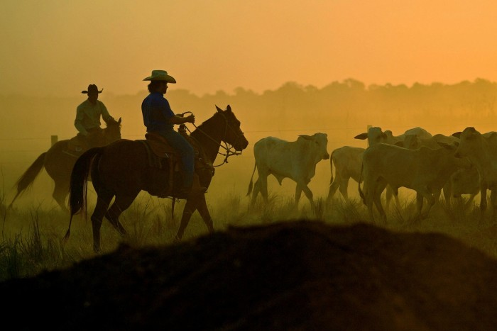 Brazil's farming sector blurs the distinction that economists sometimes draw between producing commodities and the more sophisticated products that generate greater wealth for a society