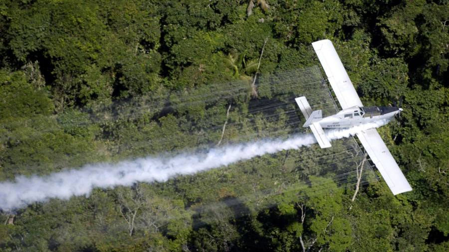 Cocaine: Colombia weighs a new aerial war on drugs