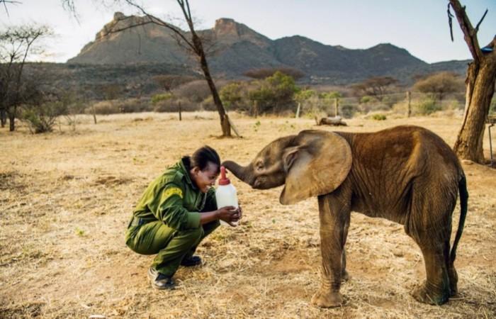 The Reteti ElephantSanctuary in northern Kenya