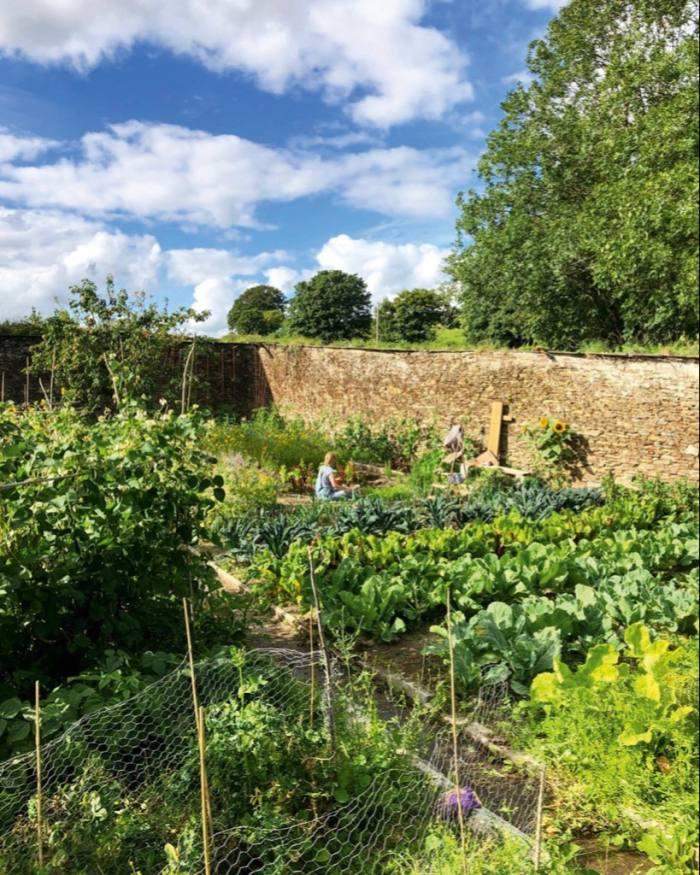 Wayzgoose Garden atTrefrawl Farm