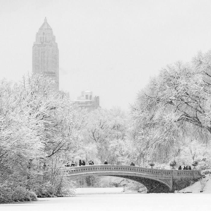 Winter Wonderland: Snow-covered Central Park